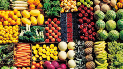Diet Nourishment - Supplements & Healthy Strong balanced Diet Living